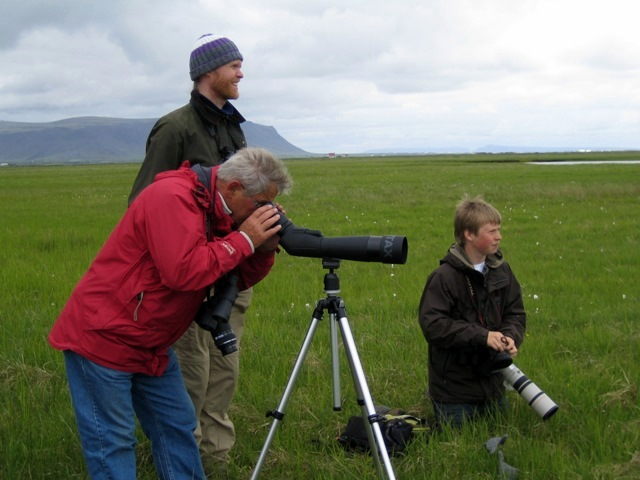 Fuglaskoðun í Friðlandinu í Flóa.