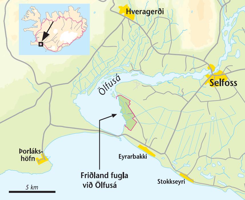 Afstöðukort af Friðlandinu í Flóa.