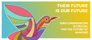 World Migratory Bird Day 2017